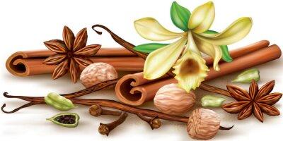 Affisch Torra aromatiska kryddor