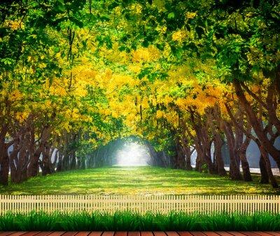 Affisch trä terrass med färska och gröna vackra sommar blommande y