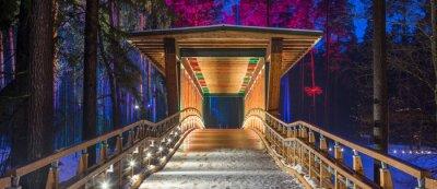 Affisch Träbro i skogen parken. Nattmångfärgade lampor.