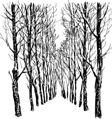 Affisch Träd i Winter Park