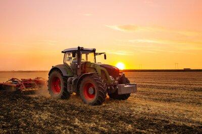 Affisch Traktor på korn fältet vid solnedgången.