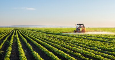 Affisch Traktor sprutning sojafält