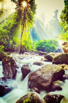 Affisch tropiska vattenfall