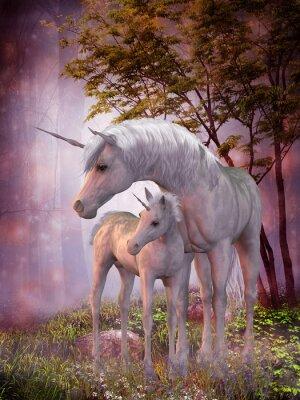 Affisch Unicorn Mare och föl
