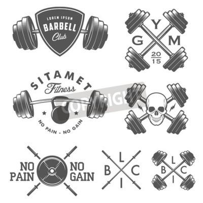 Affisch Uppsättning av årgång gym emblem etiketter och designelement