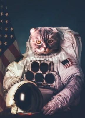 Affisch Vacker katt astronaut.