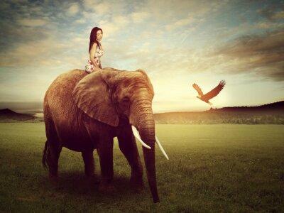 Affisch vacker kvinna som sitter på en elefant