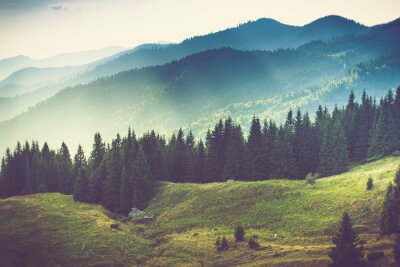Affisch Vacker sommar bergslandskap.