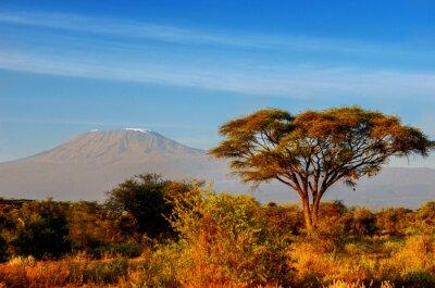 Affisch Vackra Kilimanjaro berg efter soluppgången på morgonen, Kenya, Amboseli nationalpark, Afrika
