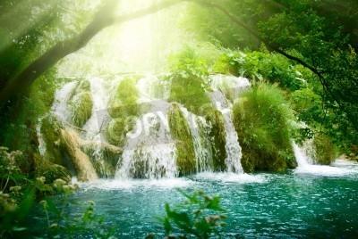 Affisch vattenfall i djupa skogen