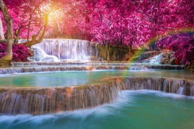 Affisch Vattenfall i regnskogen (Tat Kuang Si vattenfall på Luang praba