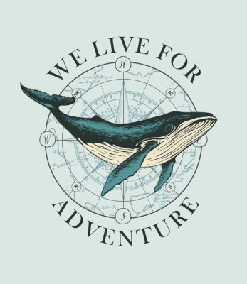 Affisch Vector banner with big hand-drawn whale on the background of wind rose and old map in retro style. Illustration on the theme of travel, adventure and discovery with words We live for adventure