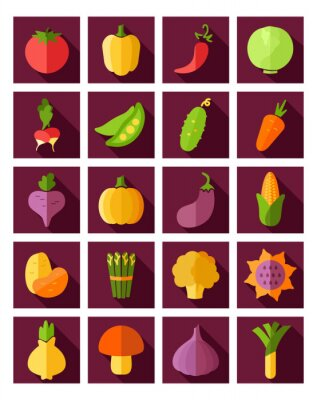Affisch Vegetabiliska platt ikon med lång skugga