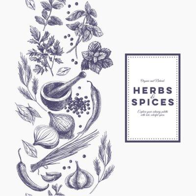Affisch Vektor bakgrund med handritad örter och kryddor.