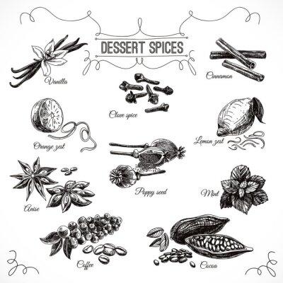 Affisch Vektor handritad in med dessert kryddor.