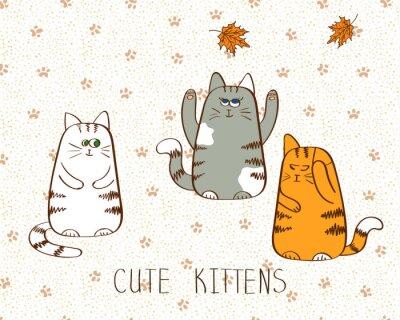 Affisch Vektor illustration av tre gulliga klotter kattungar.