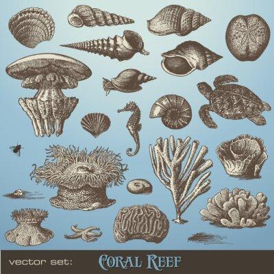 Affisch vektor set: korallrev - utbud av fisk- och designelement