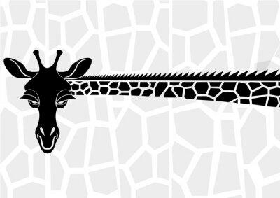 Affisch Vilda djur och växter