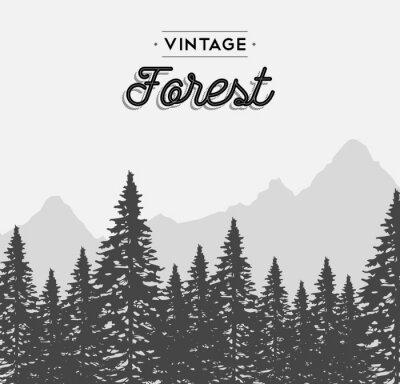 Affisch Vintage skog textetikett på vinter träd landskap