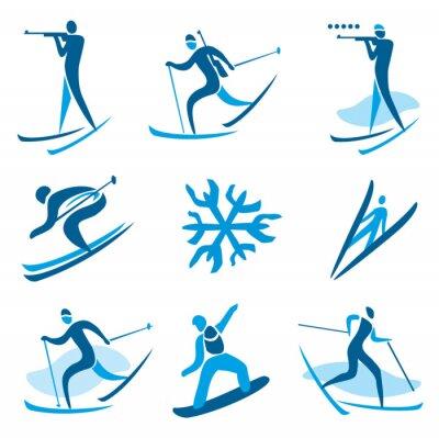 Affisch Vintersport symboler