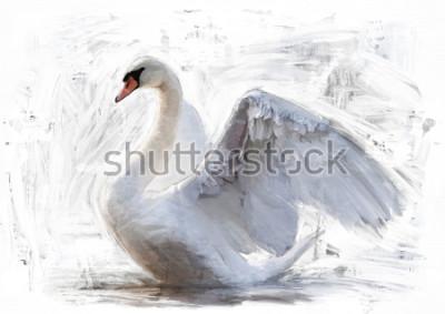 Affisch vit svans skiss / oljemålning färg