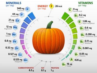 Affisch Vitaminer och mineraler i pumpa. Vinter squash näringsämnen