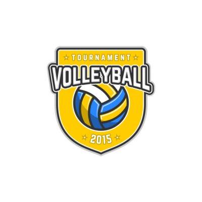 Affisch volley Bally