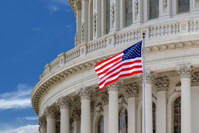 Affisch Washington DC Capitol detalj på mulen himmel