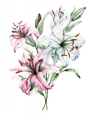 Affisch Watercolor flowers lilies. Floral bouquet, clip art. Arrangement with lily perfectly for printing design on invitations, cards, wall art and other. Isolated on white. Hand painted.