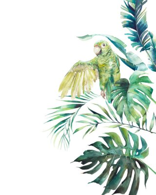 Affisch Watercolor green parrot frame. Hand drawn greeting card design with exotic leaves and branches isolated on white background. Palm tree, banana leaves, mostera plants