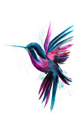 Affisch Watercolor Hummingbird flying and isolated on white background. Rainbow bird. Tropical colibri watercolor illustration.