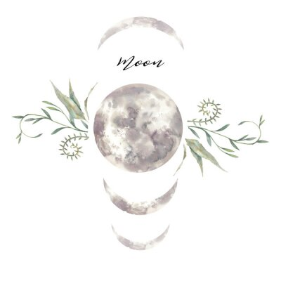 Affisch Watercolor moon and plants label. Isolated logo design with plants and lunar silhouette
