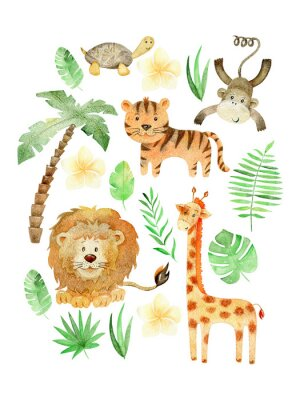 Affisch Watercolor safari arrangements.