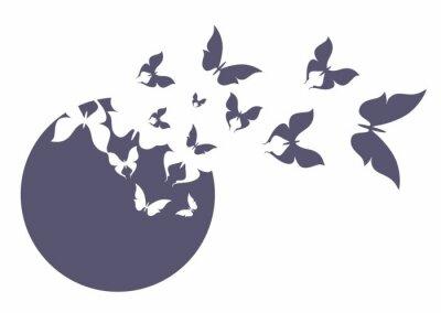 Affisch Бабочка