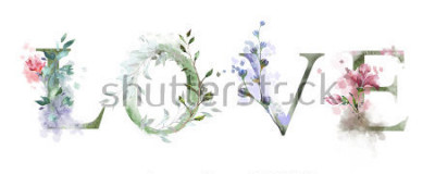 Affisch akvarell illustration med vilda blommor, örter - kärlek. Coolt ut på T-shirt. Årgang. Text