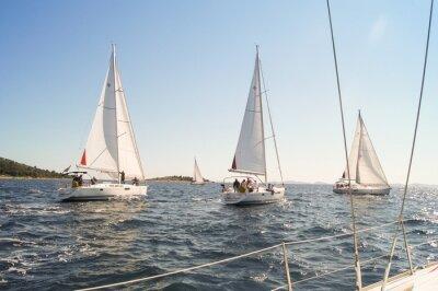 Affisch Yacht segling på vattnet längs stranden
