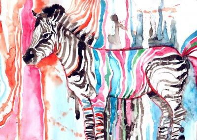 Affisch zebra