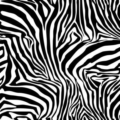 Affisch Zebra Stripes. Bakgrund. Mönster. En sömlös mönster.