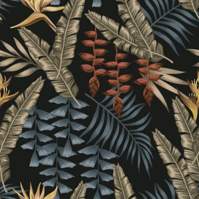 Canvastavlor Abstract color tropical seamless black background