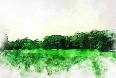 Canvastavlor Abstract colorful shape on tree and field landscape watercolor illustration painting background.
