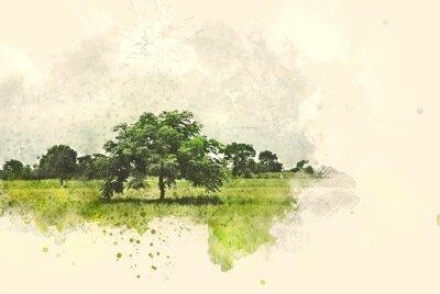 Canvastavlor Abstrakt träd- och fältlandskap på målarbakgrund för akvarellillustration.