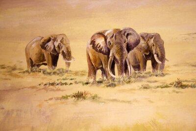 Canvastavlor Afrikansk elefant, Sydafrika