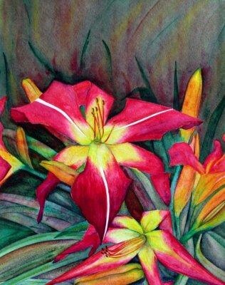 Canvastavlor Akryl illustrationer av ljusa blommor. Blommor dagliljar.