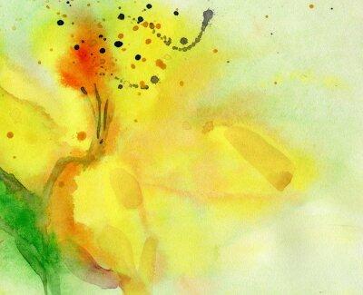 Canvastavlor akvarell bakgrund med gul lilja. Målning på papper.
