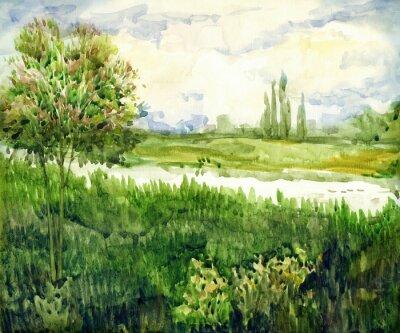 Canvastavlor Akvarell landskap. Unga träd i äng nära flod