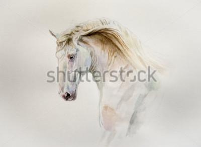 Canvastavlor akvarell lusitano hästporträtt