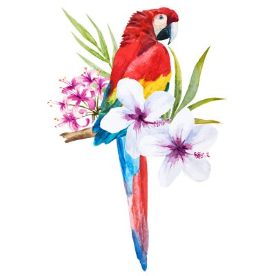 Canvastavlor akvarell papegoja