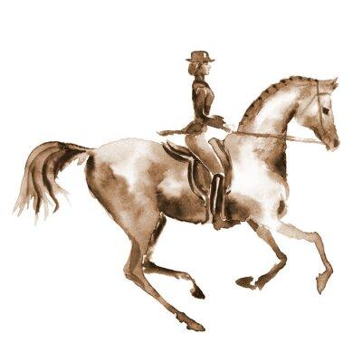 Canvastavlor Akvarell ryttare och dressyrhäst på vitt. Hästsport. Handmålning illustration häst bakgrund.