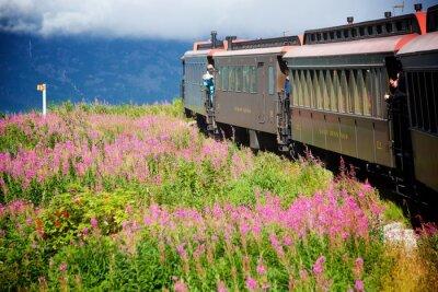 Canvastavlor Alaskan tåg