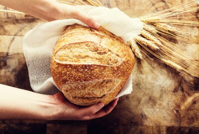 Canvastavlor Baker håller en limpa bröd på lant bacgkround
